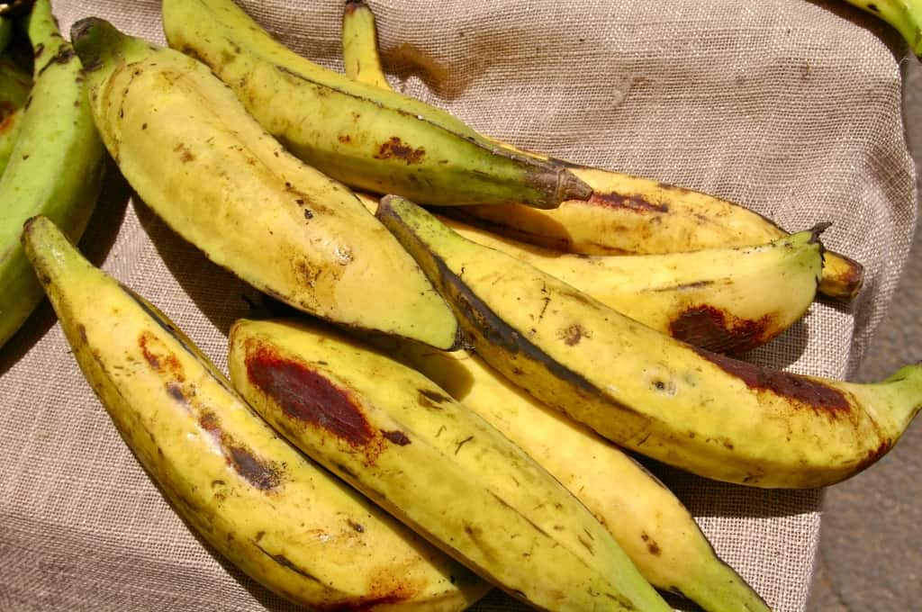 13-common-fruits-with-amazing-healing-properties-11