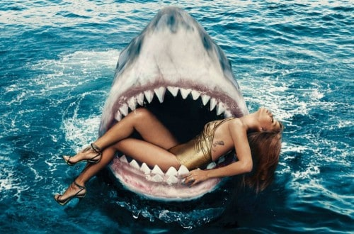 10 Everyday Things That Can Be More Dangerous Than Sharks