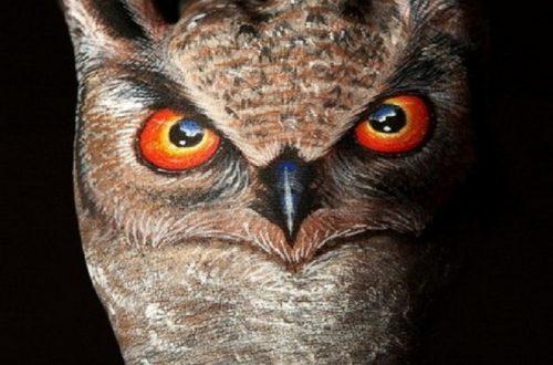 10 Brilliant Pieces Of Animal Hand Art